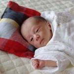 hugmamu(はぐまむ)の寝具
