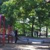 いつもと違う公園