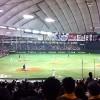 東京ドームで野球観戦