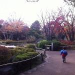 行船公園@江戸川区